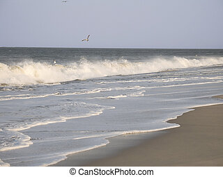 Long Wave - This is a shot of a long breaking wave in Sandy...