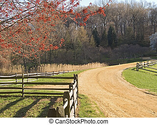Farm Road - This is a shot of a clay road on a historic farm...