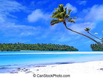 um, pé, ilha
