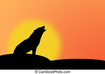 Howling wolf - Silhouette of howling wolf against a sunset...