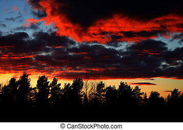 Burning sky - A red sky in the evening, looks like its...