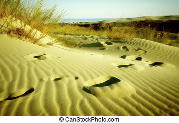 Footprints in the sand. Olded & blured.