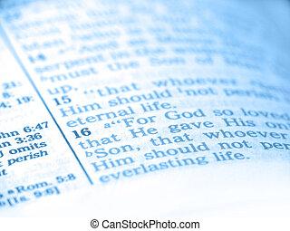 bible, résumé, bleu
