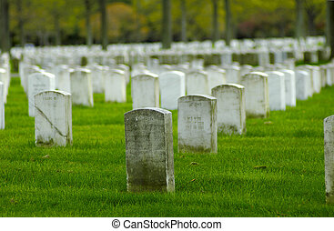 Cemetary - Photo of White Marble Tombstones