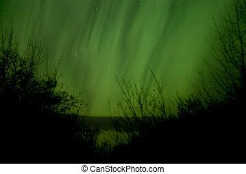 Aurora Borealis - A pale green aurora near Elk Island N.P.,...