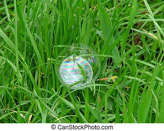 Rainbow on grass