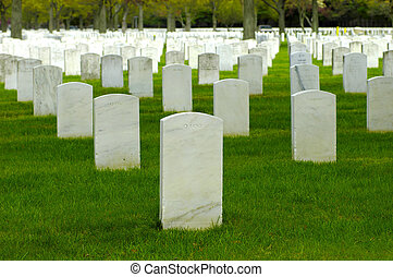 Cemetary 4 - Photo of WHite Headstones