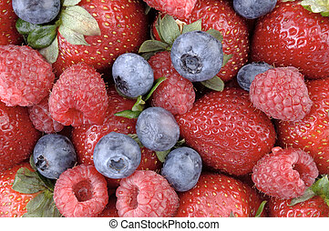 Berry Berrylicious 2 - A mouthwatering horizontal display of...