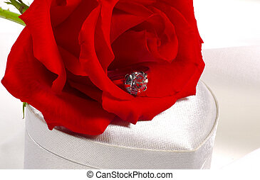 Diamond Engagement Ring - Diamond Engagement and a Red Rose
