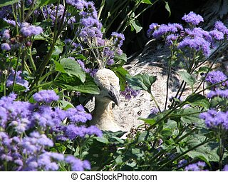 Female Peacock - Peacock, flowers, plants, foilage
