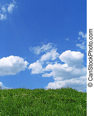 Sky and grass