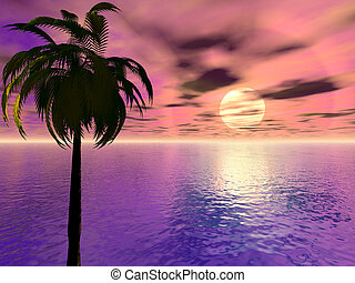 Sunset with Palm Tree - An ocean sunset with palm tree.
