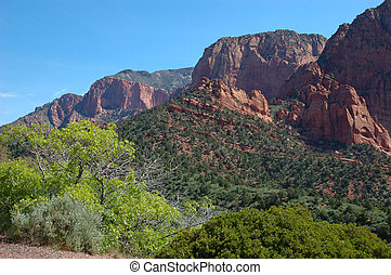 Kolob Canyons - Spring morning in Kolob Canyons near St....