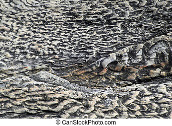 Limestone ripples - ripples in the stone of a former...