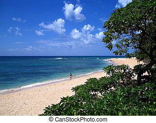 North Shore Stroll - Winding view of a North Shore, Hawaii...
