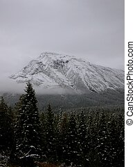 Snow Capped Mountian in Tumbler Ridge, BC, Canada