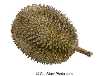 Durian 2 - the spiky exterior of the fruit called the...