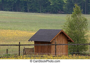 Cabin and grassland - A garden hut in grassland. Hunsrueck...