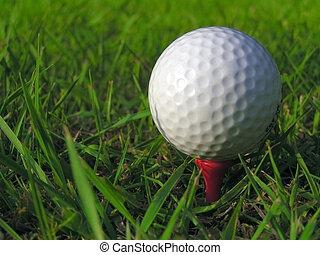 Golf Ball - A golf ball on a tee in long grass