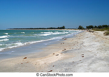 Florida Beach 1 - A florida beach with tourists in the...