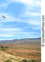 Sunset Point - Bird flying over mountainous terrain at...