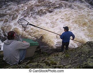 pesca, homem