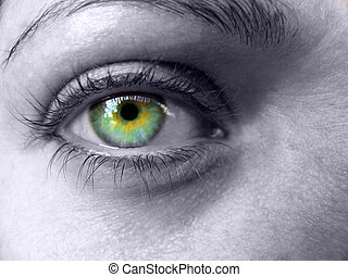 Colorful Eye - Eye upclose