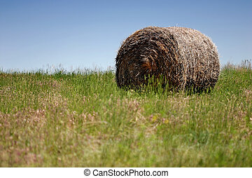 bale of hay - a lonely bale of hay lies on a pasture against...