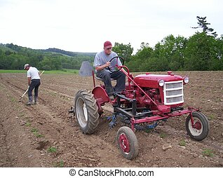 men working on farm tractor is cultivating around new...