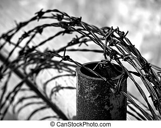 barbed wire fence, shot in infrared and converted to black...