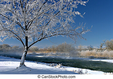 winterscape - the beauty of winter