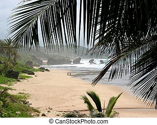 Barbados Beach - Batsheba Beach at the east coast of the...