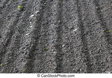 Ploughed - Freshly ploughed field ready for crop planting,...