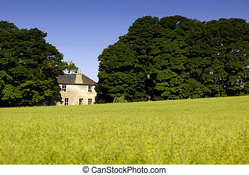 Rural Cottage - Rural cottage, scotland