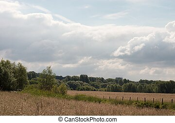 Ruhr floodplain - Meadows in the ruhr valley floodplain in...