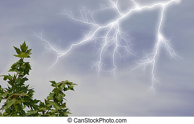 Lightening in Sky - Lightening striking near tree branch....