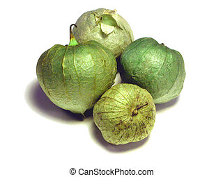 Tomatillos - A group of four tomatillos isolated on white.