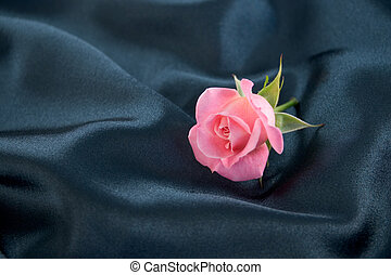 Pink rosebud - A pink rosebud lying on blue satin