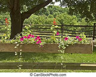 Flower Box - This is a shot of a flower box in the country