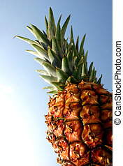 Pineapple with blue backdrop
