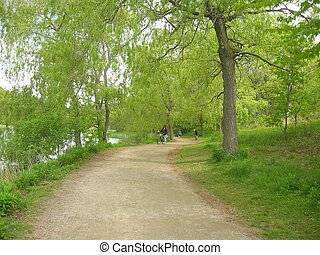 Winding Path - A winding path in a park