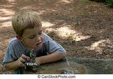 Thirst Quenching - A little boy lapping water from a...