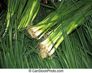 Market - shallots - Green shallots at market