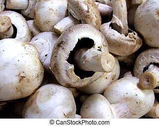 Markets - Mushrooms - Fresh Mushrooms at Markets