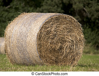 Hay Bail - Close up of a hay bail