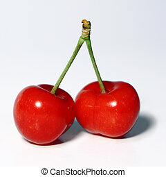 Together (couple) - Two cherries together symbolizing love...