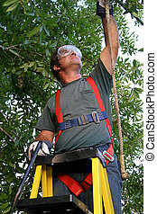 Safety on the Job - A man on a ladder attaching his safety...
