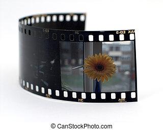 diapositiva, película