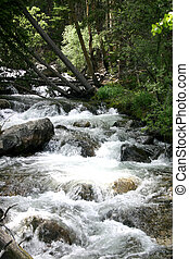 Babbling Brook - Babbling brook becomes icy mountain stream...