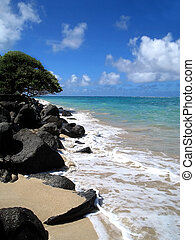 Windward Shoreline - Hawaiian shoreline at high tide with...